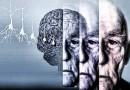 Ученые нашли 11 генов, повышающих риск болезни Альцгеймера