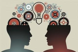 Количество друзей влияет на структуру человеческого мозга