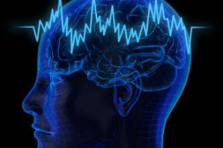 Для эффективной работы мозг настраивается как радио