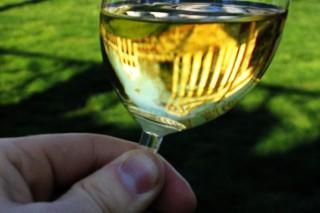 Употребление спиртного может в полтора раза увеличить риск рака кожи