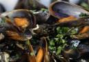 Морепродукты могут быть опасными для почек