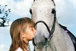 Катание на лошадях снижает уровни гормонов стресса у молодежи