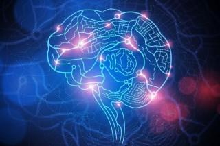 Мозг начинает стареть после 24 лет