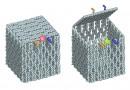 Ученые с помощью ДНК создали нанороботов внутри живого организма