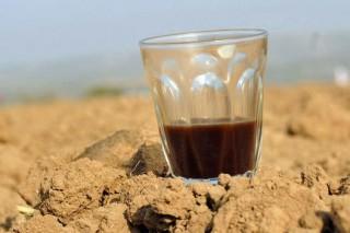 Действительно ли чай и кофе обезвоживают организм?