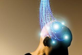 Мозг человека эволюционирует медленнее мышц