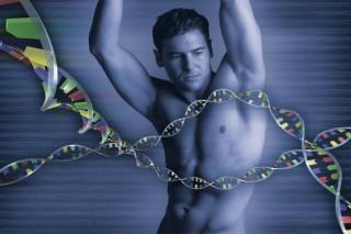 Люди выбирают супругов со схожей ДНК