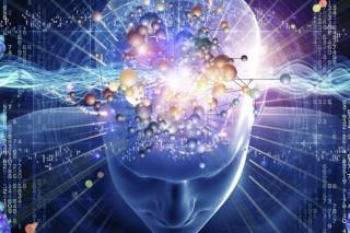 Ученые открыли внутренний механизм сохранения баланса мозга