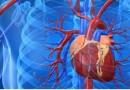 Генная терапия поможет восстановить работу сердца